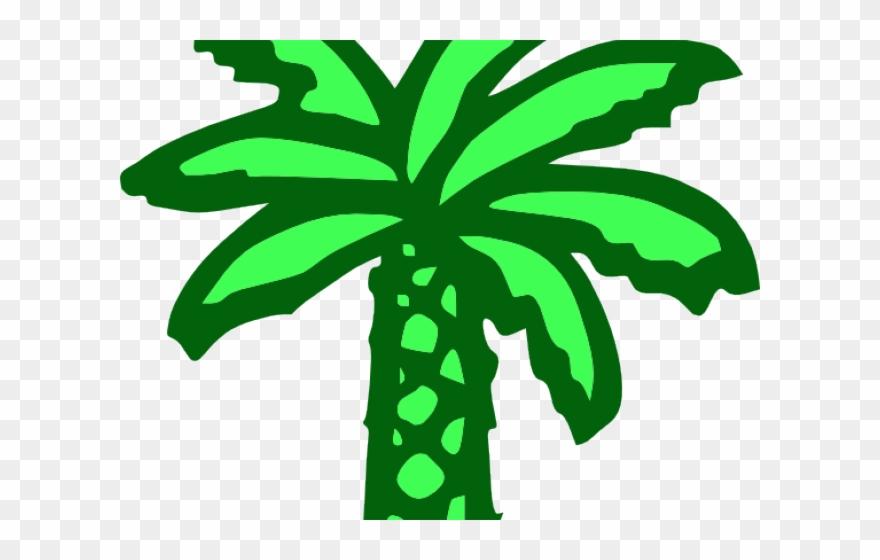 Date Palm Clipart Kelapa Sawit.