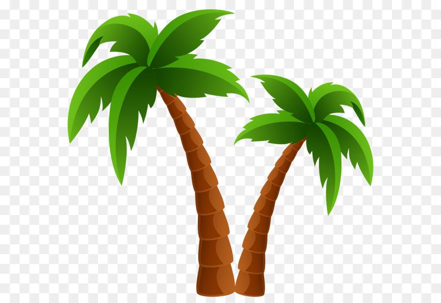 Arecaceae, Pohon, Kelapa gambar png.
