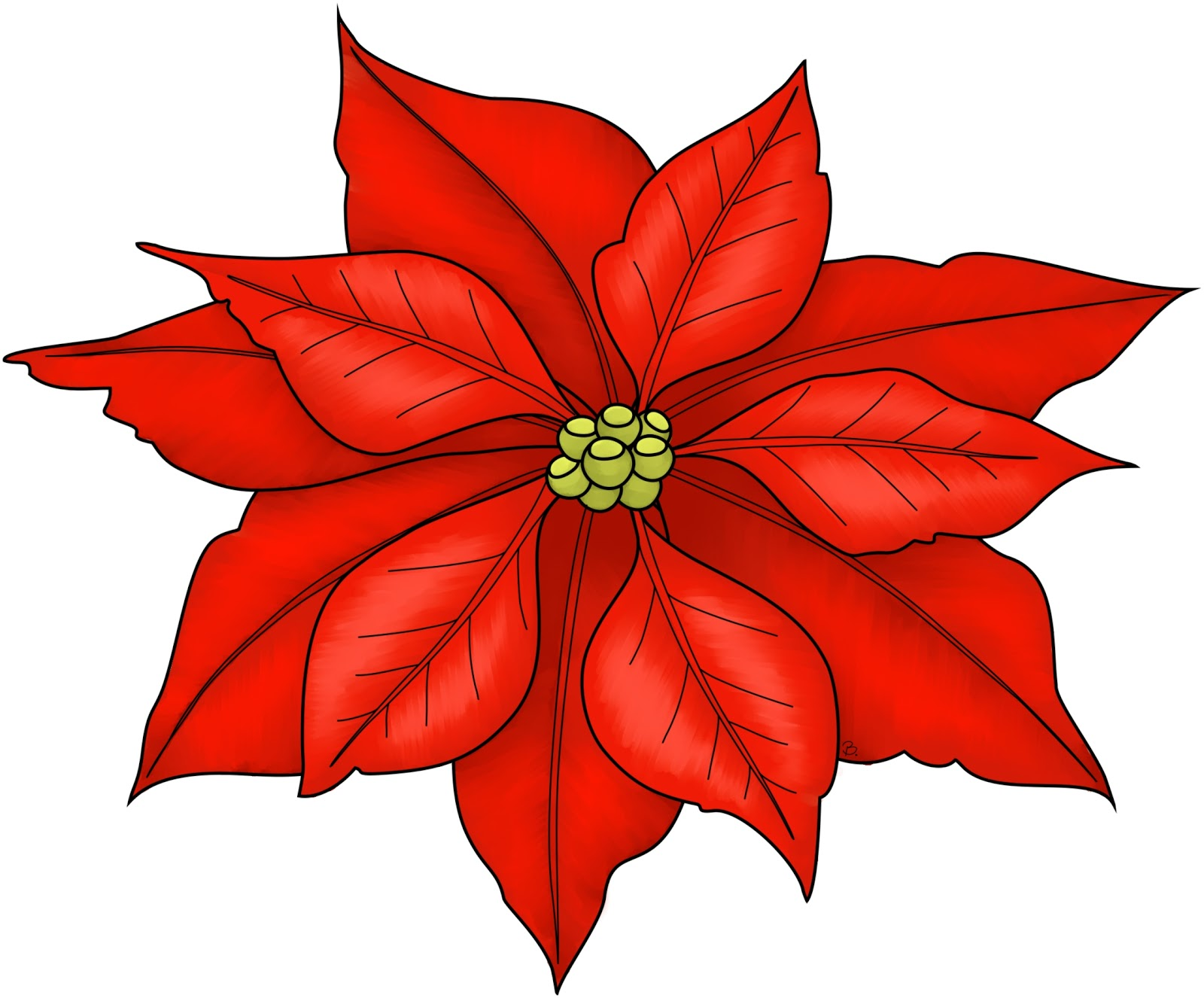 1000+ images about Christmas flower on Pinterest.