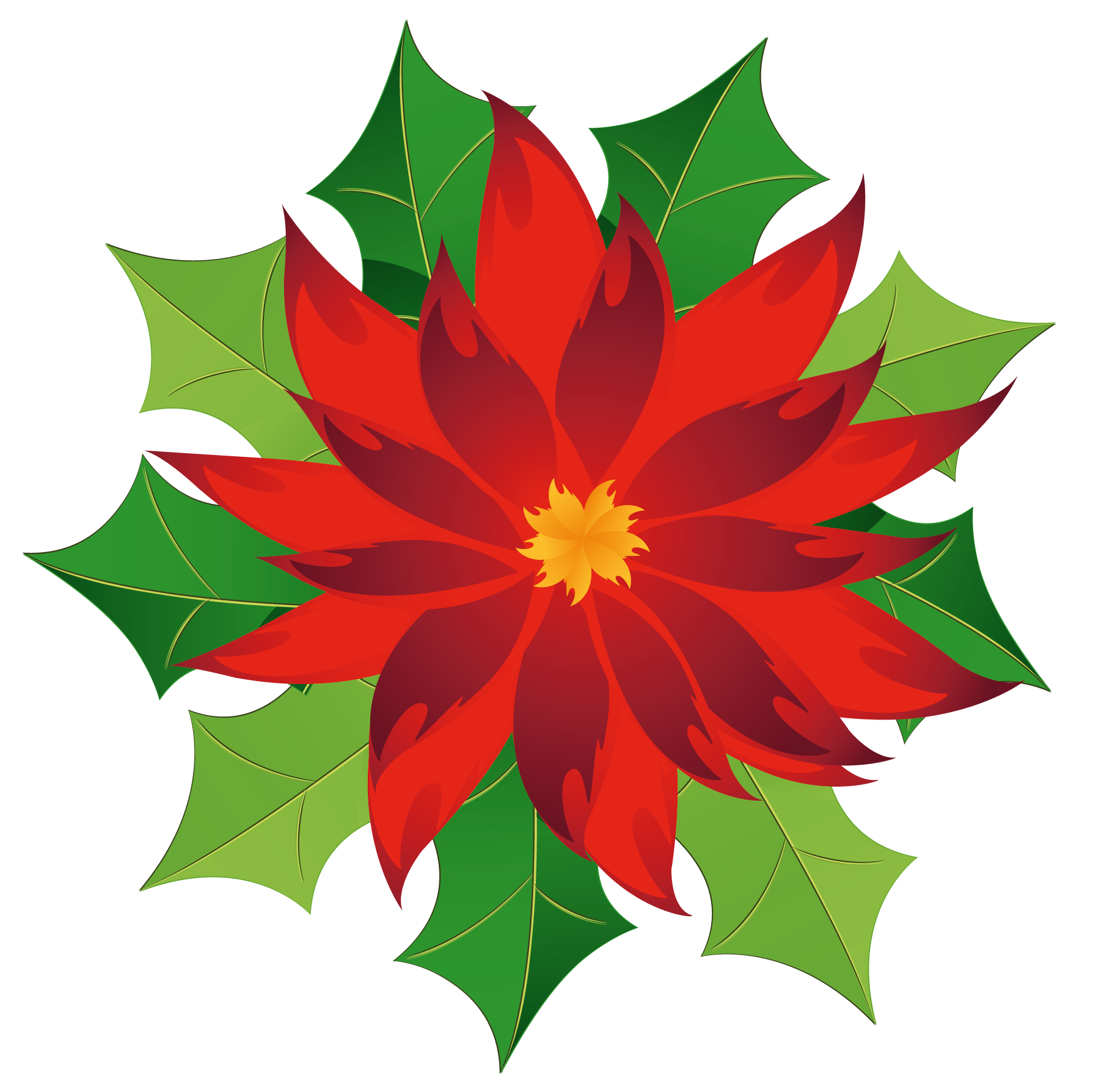 Christmas_Poinsettia_Clipart.png?m=1399672800.