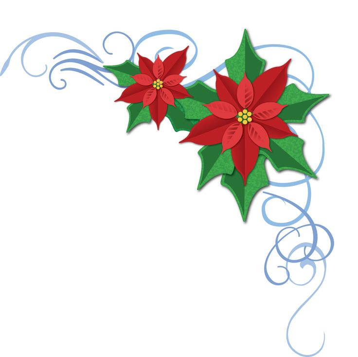 Free Pictures Of Poinsettias, Download Free Clip Art, Free.