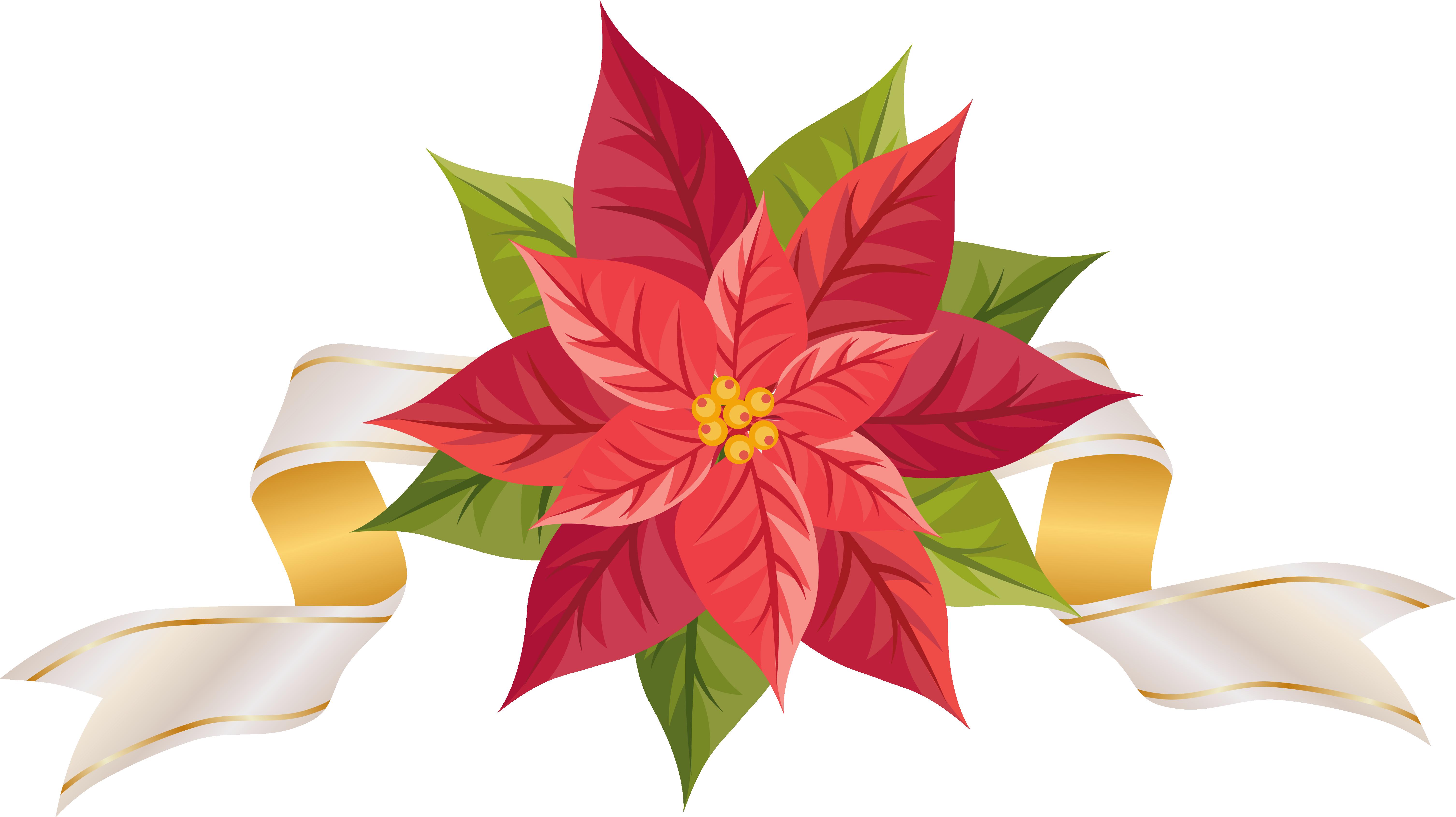 Free Poinsettias Cliparts, Download Free Clip Art, Free Clip.