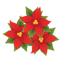 Free Poinsettias Cliparts, Download Free Clip Art, Free Clip.