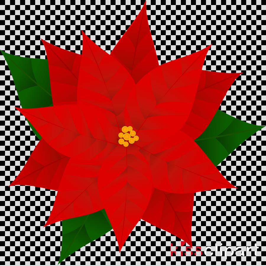 red poinsettia clip art plant flower clipart.