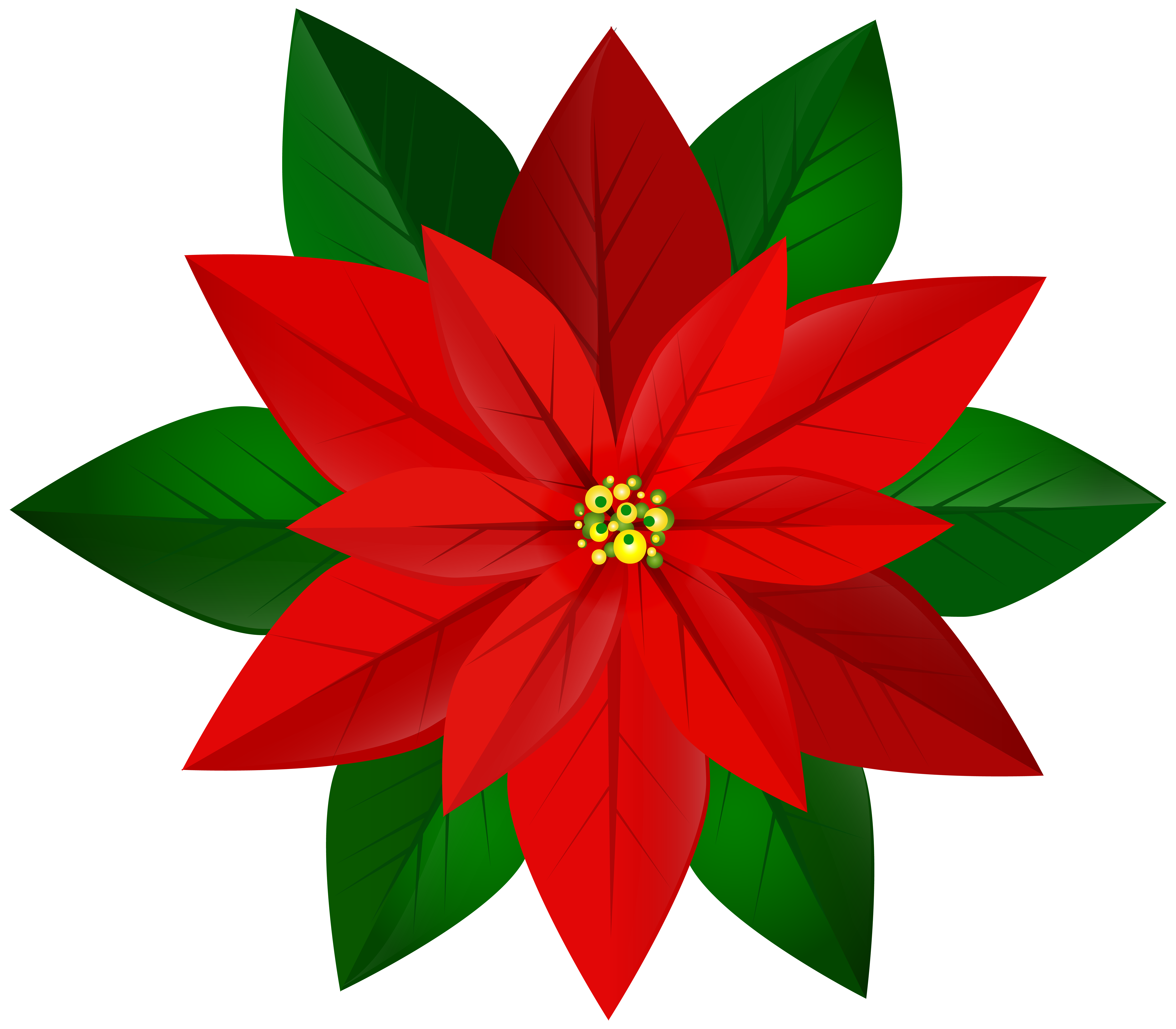 Christmas Red Poinsettia PNG Clip Art Image.