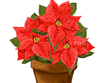 Free Free Poinsettia Clipart, Download Free Clip Art, Free.