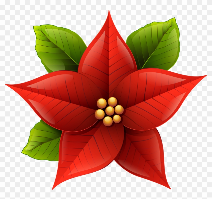 Christmas Poinsettia Png Clip.