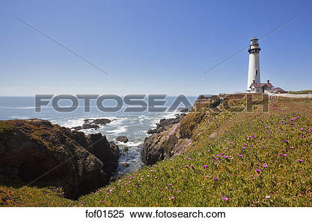 Stock Image of USA, California, Pigeon Point Lighthouse fof01525.