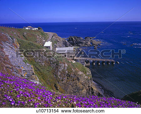 Stock Photo of England, Cornwall, Lizard Point, Lizard Point, the.