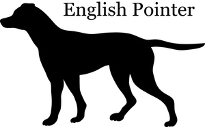 English Pointer Clipart Image.