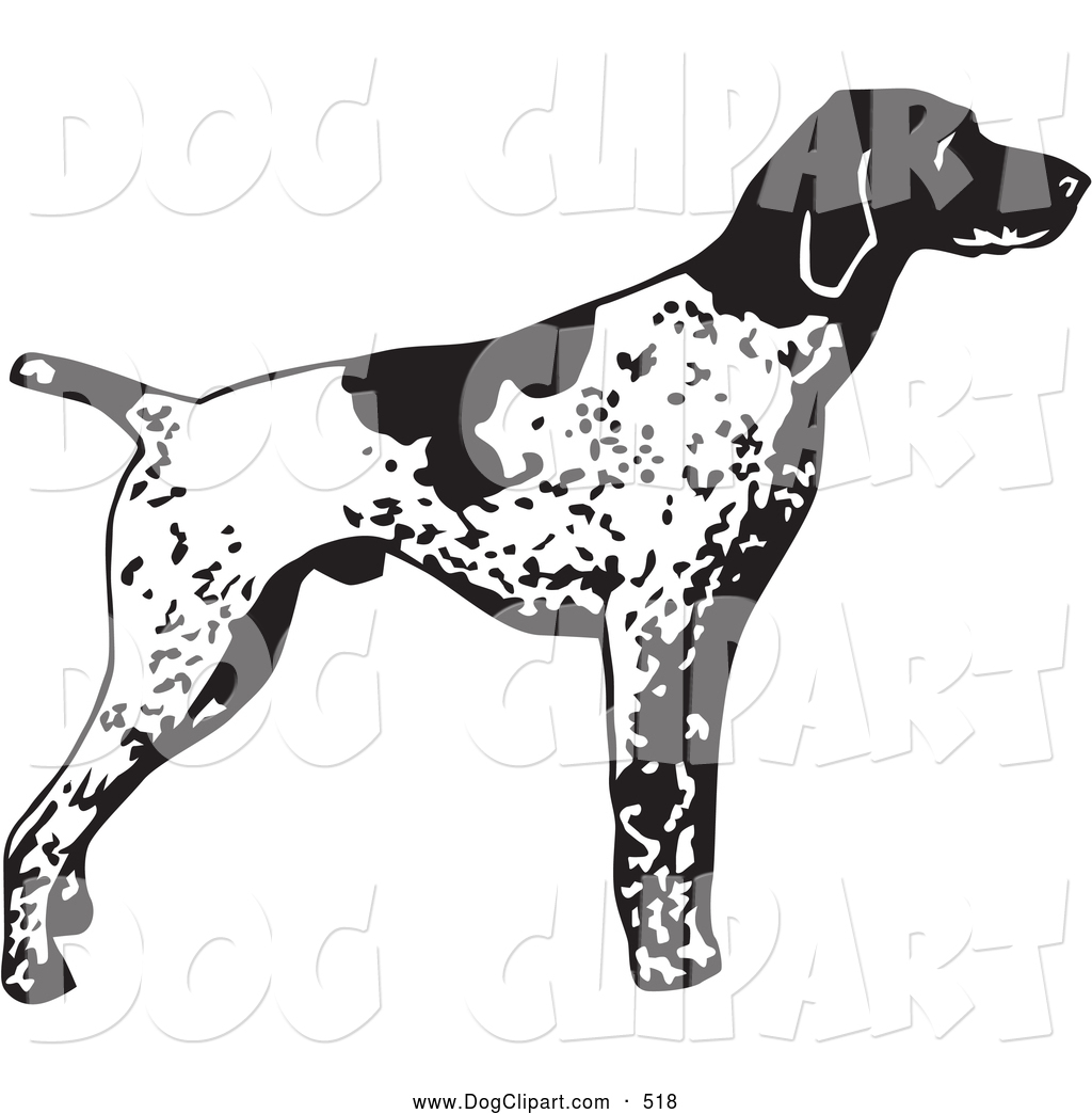 Clip Art of an Alert English Pointer Dog, Standing and Pointing.