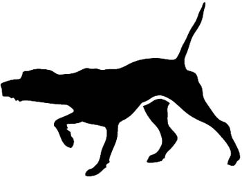 Pointer Hunting dog pointing with nose silhouette vinyl decal.
