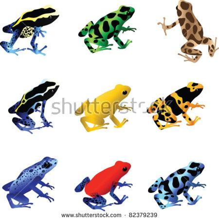 Poison Dart Frog Stock Photos, Royalty.