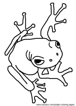 Poison Dart Frog Clip Art.