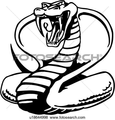 Clip Art of , cobra, fang, king, poison, reptile, snake, venom.
