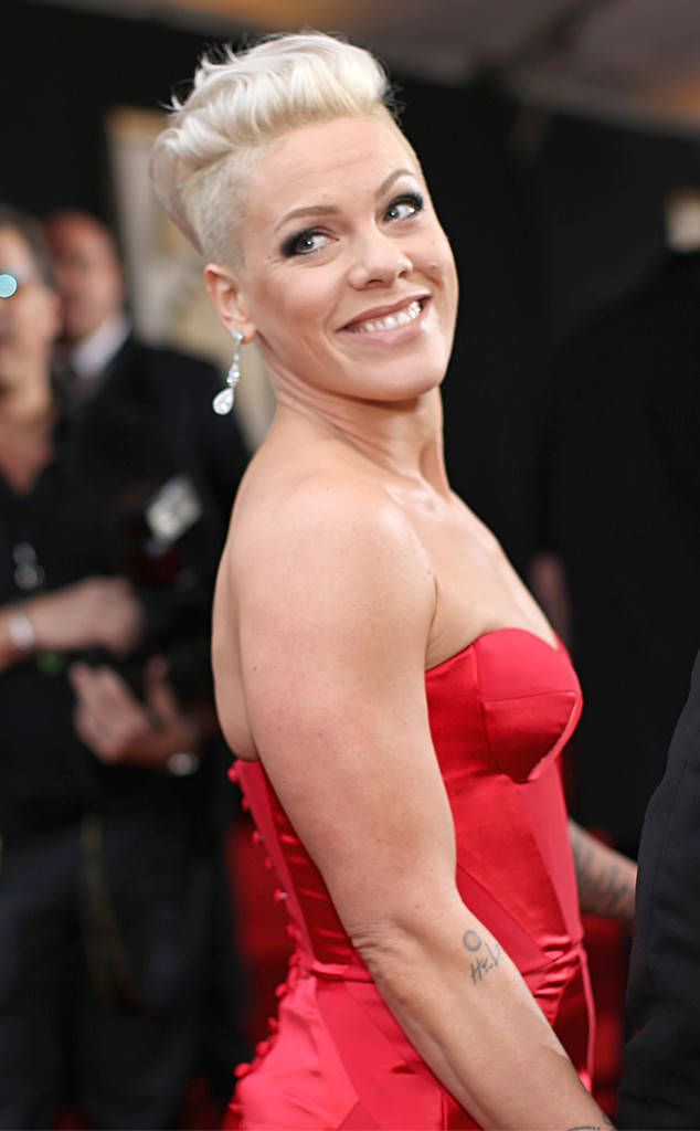 Pink Is PregnantWith a Thin Mint Baby! Singer Pokes Fun at.
