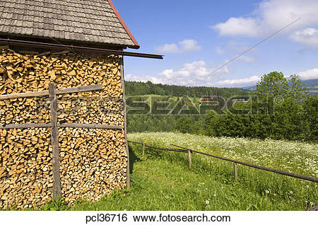 Stock Images of Rural Landscape Near Haluszowa Village, Pieniny.