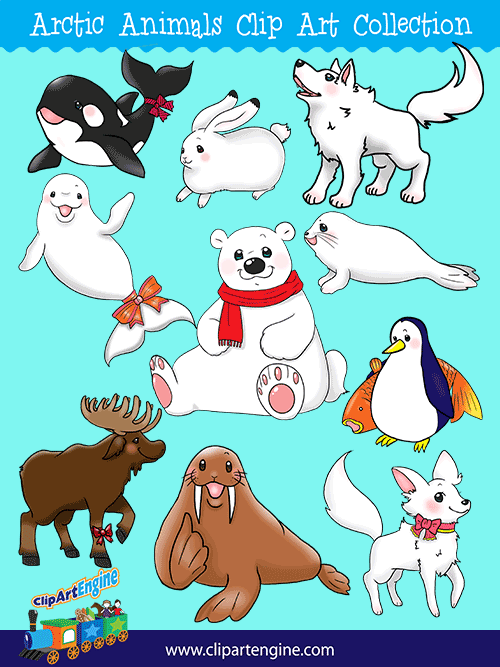 Arctic Animals Clip Art Collection for Personal and Commercial Use.
