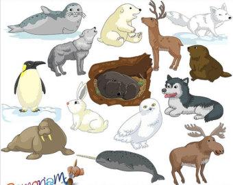 Polar animals clipart.