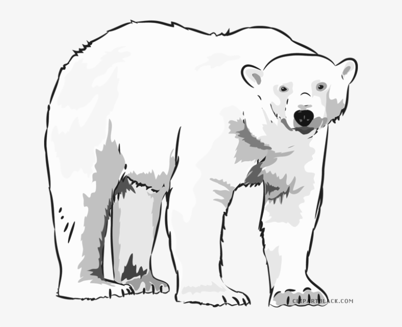 Polar Bear Clipart.