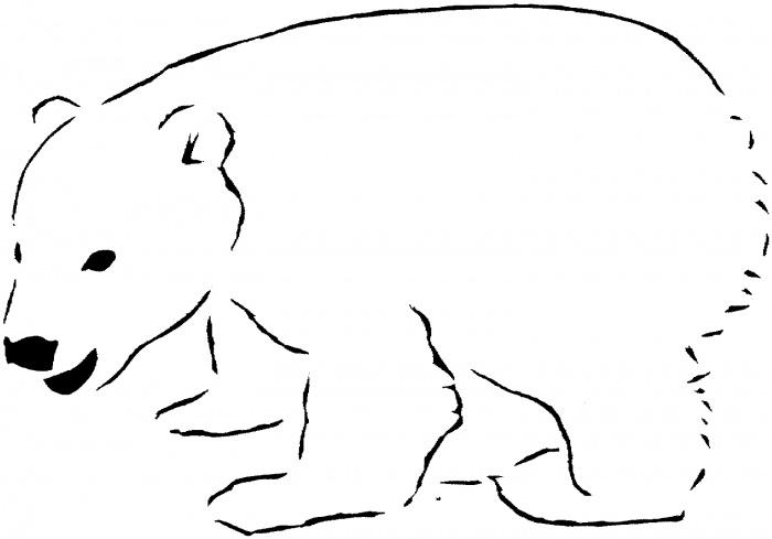 Polar Bear Outline.