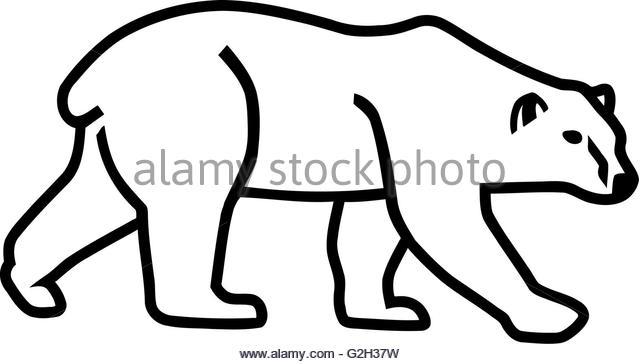 Arctic Bear Polar Black and White Stock Photos & Images.