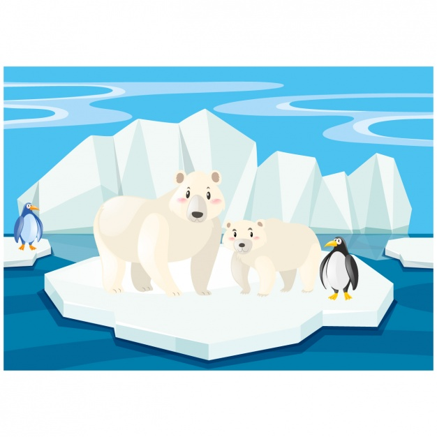 Scene of polar bears and penguins on an iceberg Vector.