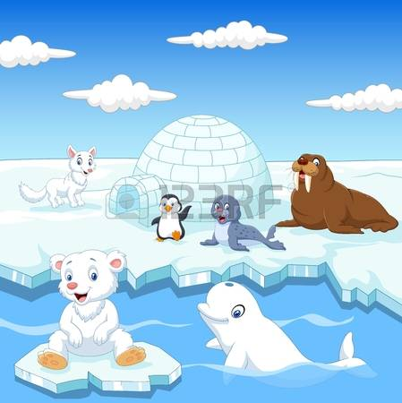 125 Polar Region Cliparts, Stock Vector And Royalty Free Polar.
