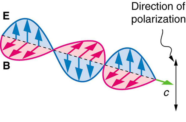Polarization By Passing Light Through Polarizers.