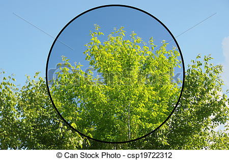Stock Photography of Polarising filter.