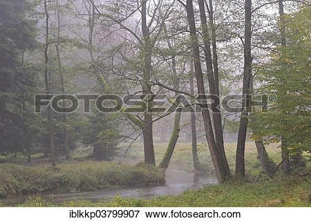 "Picture of ""River in autumn in Kirnischtal valley, Saxon."