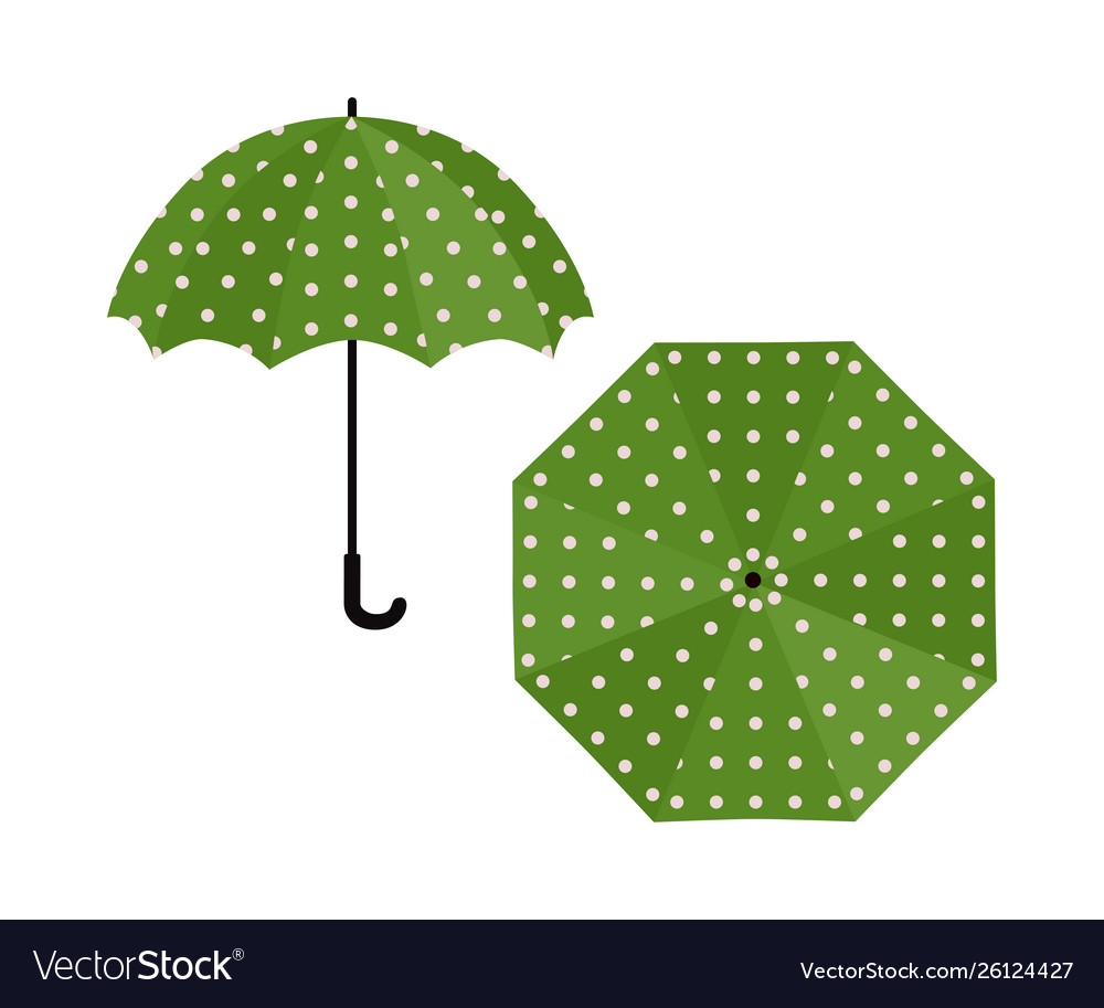 Umbrella green with polka dot on white background.