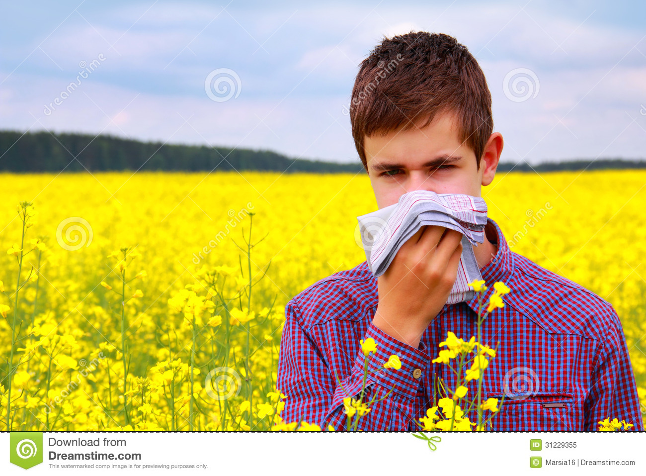 Pollen Allergy Clip Art.