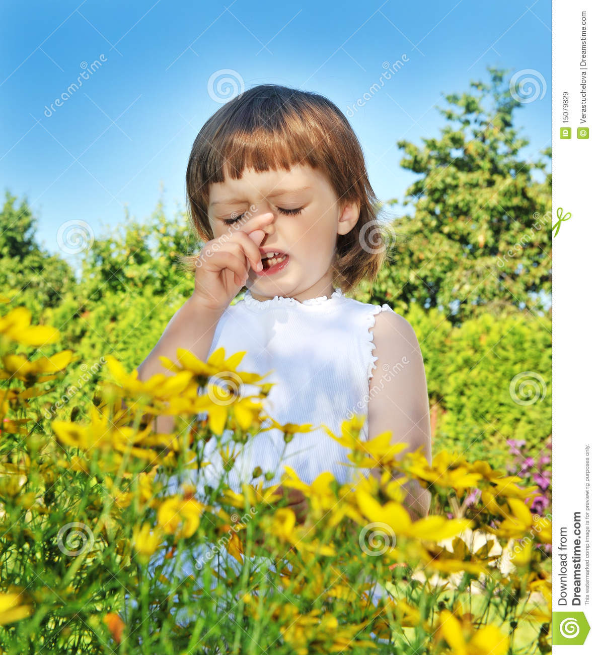 Pollen Allergy Clip Art.