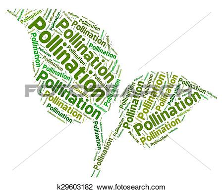 Clip Art of Pollination Word Indicates Procreation Pollinate And.