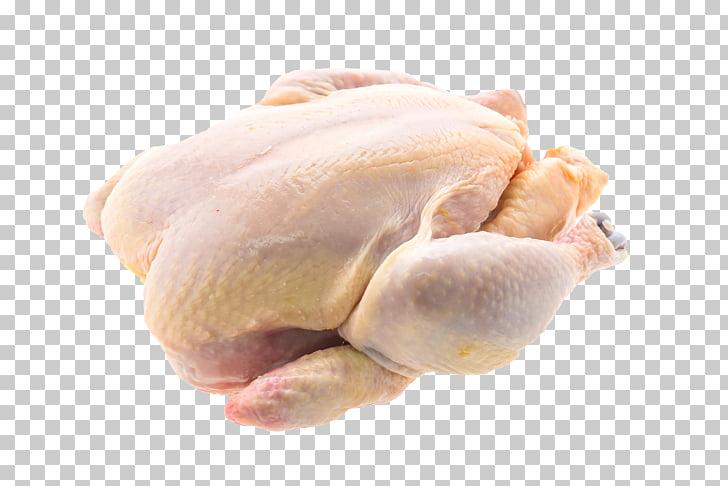 Pollo carne comida de pollo, pollo PNG Clipart.