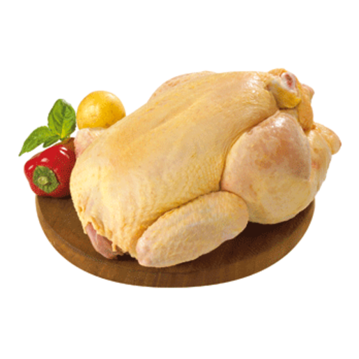 Pollo png » PNG Image.