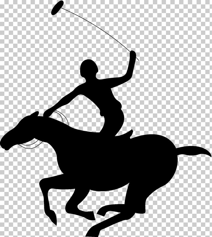 Horse Acoaxet Polo Club , horse PNG clipart.