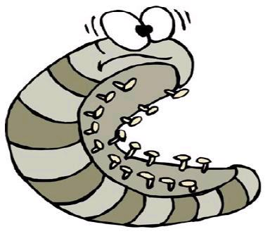 Roly poly clipart.