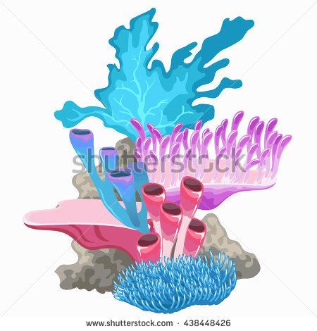 Polyps Stock Photos, Royalty.