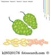 Polysaccharide Clip Art Illustrations. 26 polysaccharide clipart.