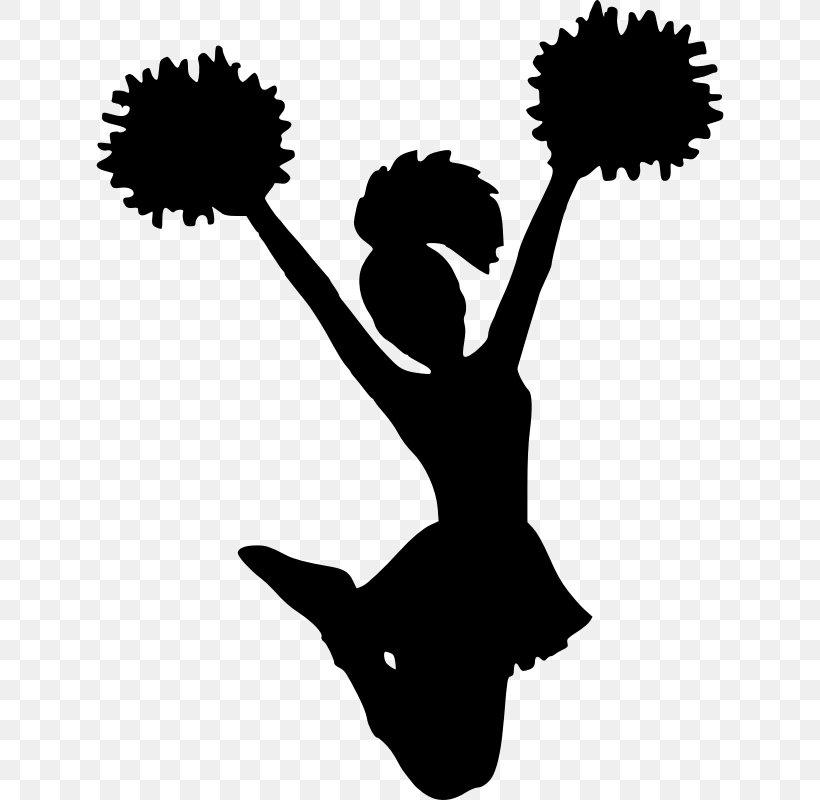 History Of Cheerleading Pom.