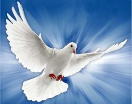 Significado dos Símbolos do Espírito Santo.