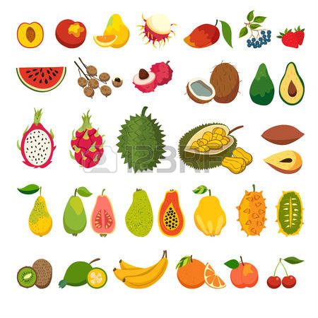 20,551 Exotic Fruits Stock Vector Illustration And Royalty Free.