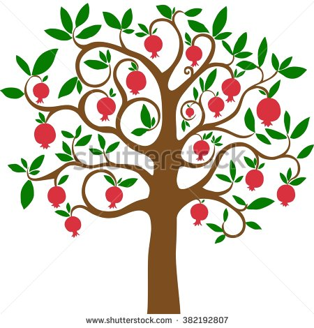 Pomegranate Tree Stock Images, Royalty.