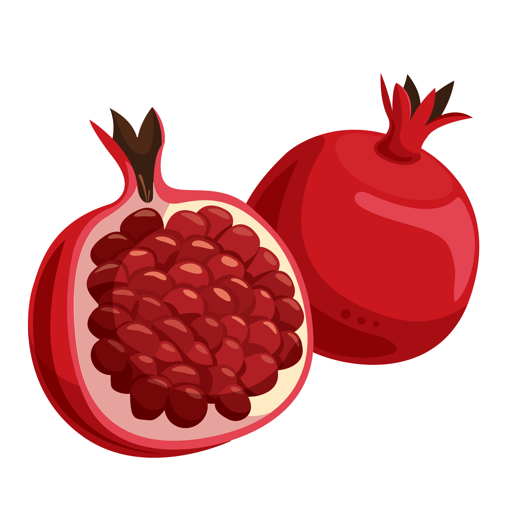 Pomegranate Fruit PNG.