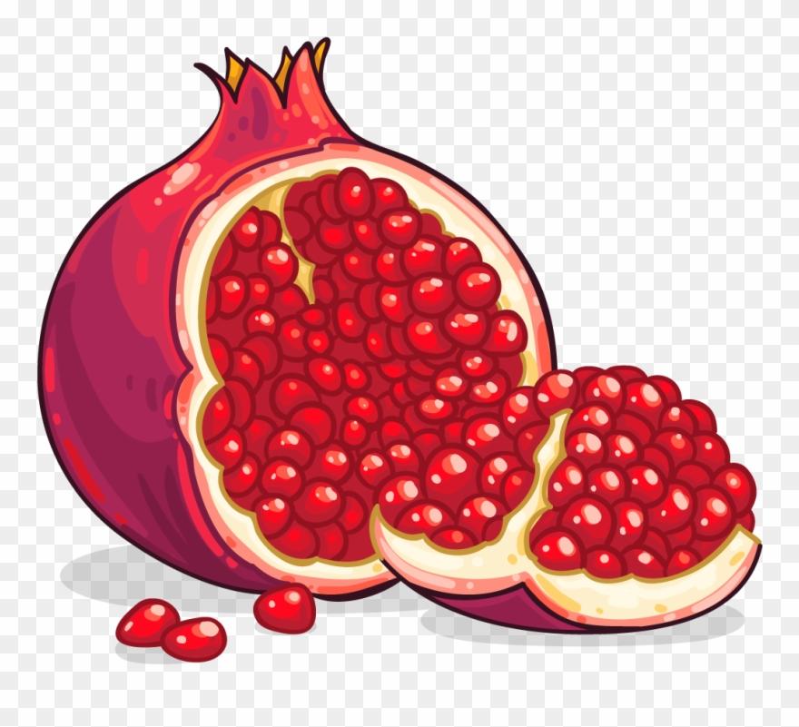Pomegranate Clip Art Pomegranate Clipart Photo Niceclipart.
