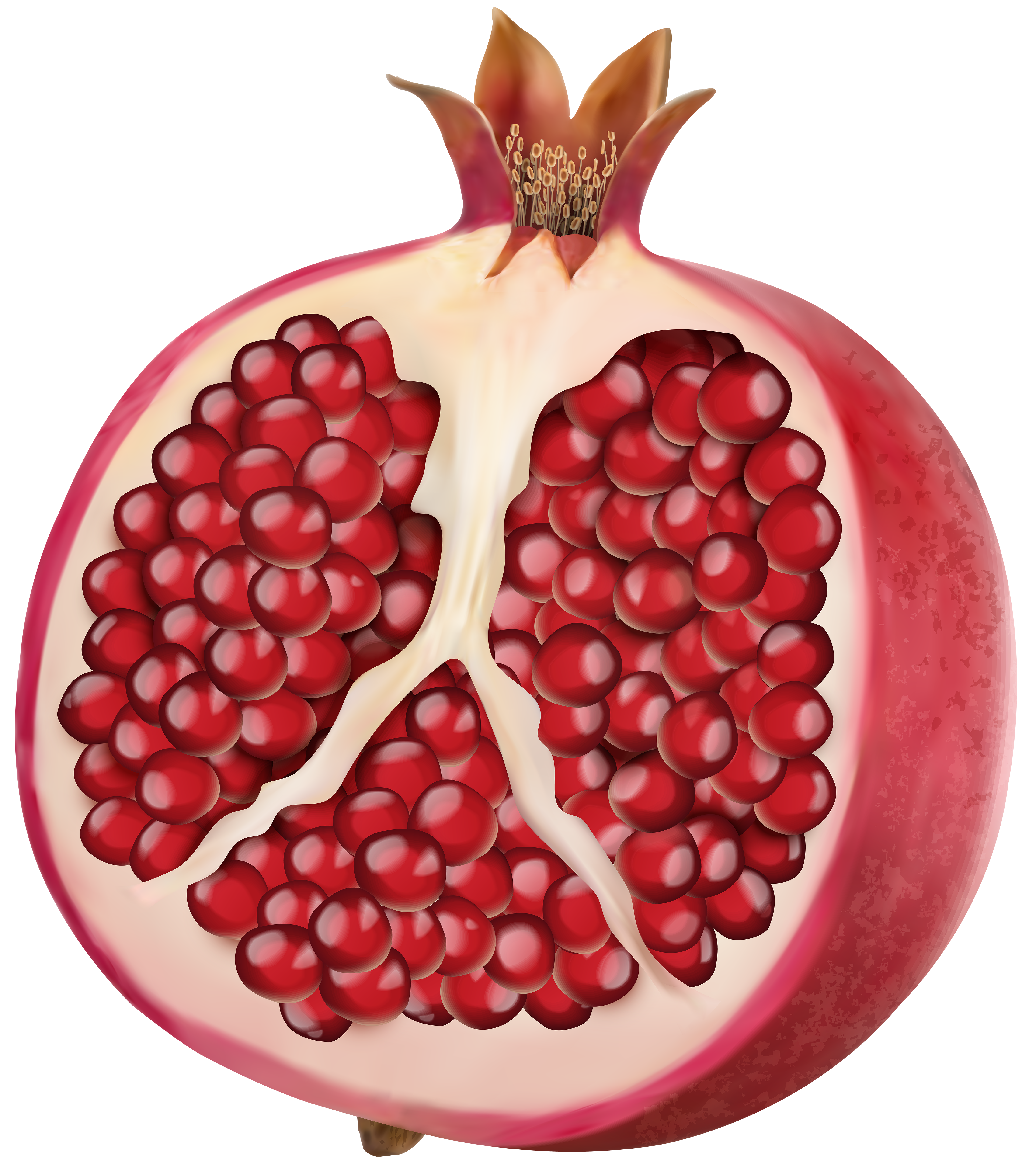 Pomegranate PNG Clip Art Image.