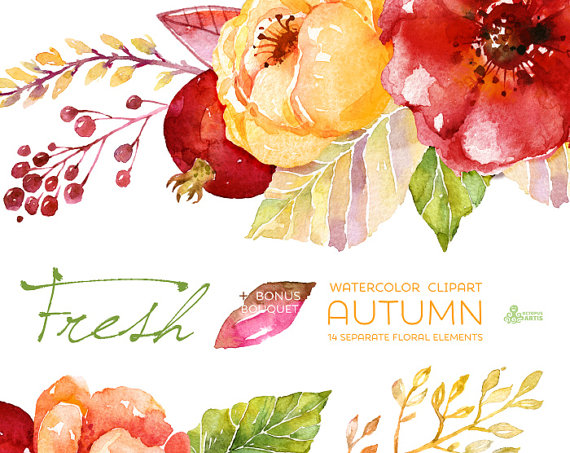 OctopusArtis — Fresh Autumn Elements Clipart + Bouquet..