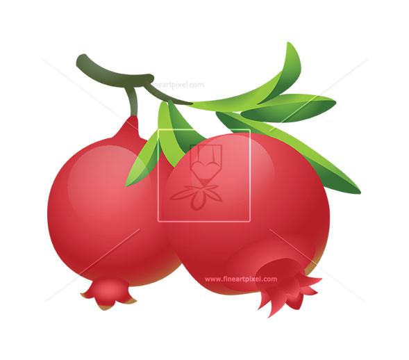 Pomegranate Fruit Clipart.